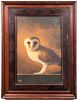 """Illegibly Signed """"Owl on Ledge"""" Oil on Board"""
