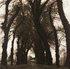 "Lynn Geesaman ""Parc de Canon France from Pocties of Place"" Gelatin Print 1995"