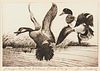 Jay Norwood Darling First Federal Duck Stamp & Etching