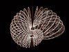 Agnes Denes: Snail Butterfly Crochet