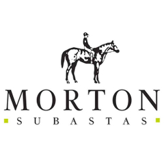 Morton Subastas